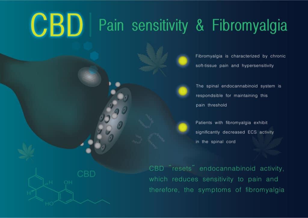 cbd chart for pain